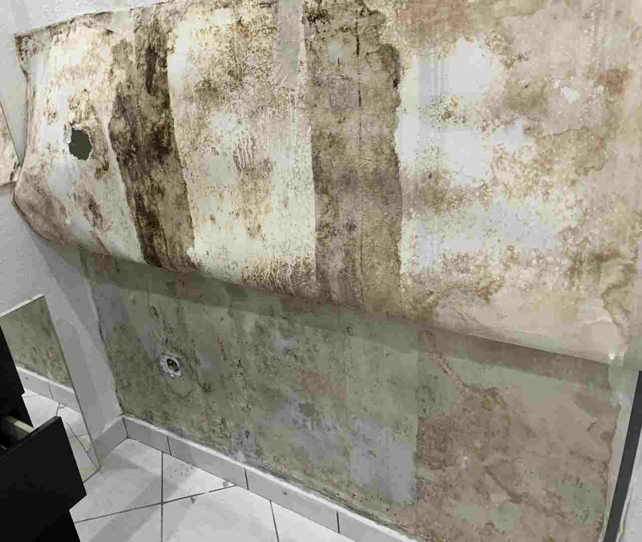 Penészes fal, itt az ózongenerátor előtt vegyszeres kezelésre is szükség van!